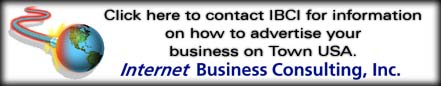 Biz Consulting Inc